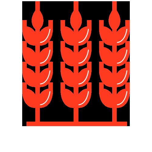 andjelic-graphic-5